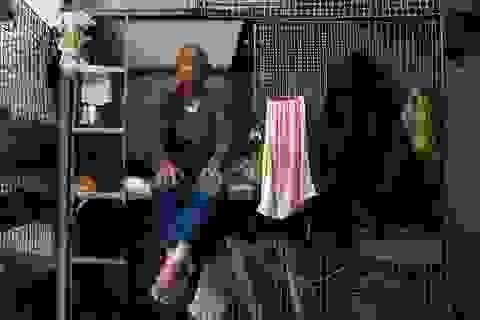 """Người nghèo chật vật tìm nhà tại """"thiên đường hoa lệ"""" Hồng Kông"""