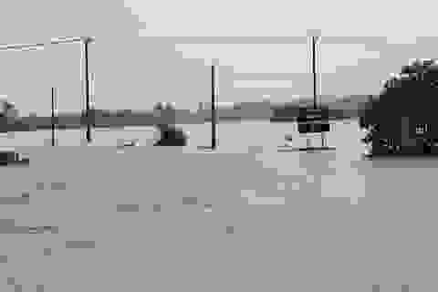 Quảng Nam: Nước lũ ở hạ nguồn đang lên, đã di dời hơn 530 hộ dân