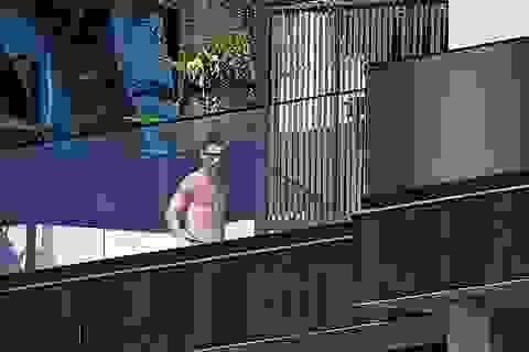 C.Ronaldo gặp rắc rối vì nhà riêng bị trộm đột nhập