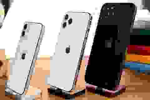 iPhone 12 ra 4 phiên bản, mẫu nào sẽ bán chạy nhất?