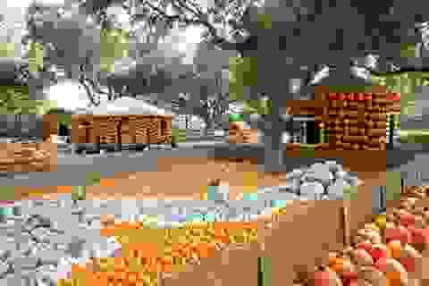 Ngôi làng được làm từ 90.000 quả bí ngô, vào bên trong như vườn cổ tích