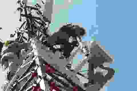 Doanh nghiệp viễn thông được phép sử dụng trạm BTS cũ lắp trên đất công
