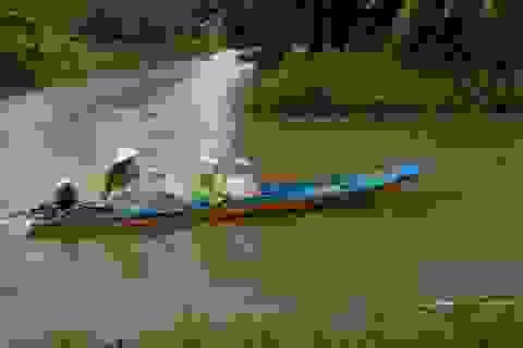 Cà Mau: Một huyện cho học sinh nghỉ học 2 ngày do ảnh hưởng bão