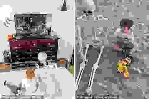 """""""Hết hồn"""" với món đồ chơi yêu thích của cậu bé 2 tuổi"""
