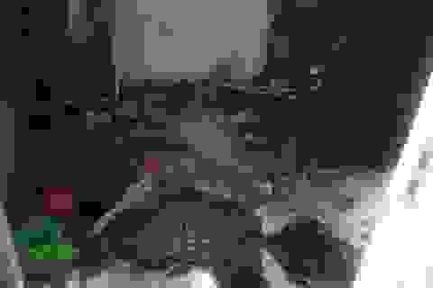 Nghịch lửa trong căn phòng khóa trái, 2 bé trai chết thảm