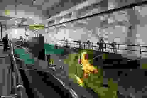 Mỹ muốn thuê căn cứ tàu ngầm nằm sát Nga