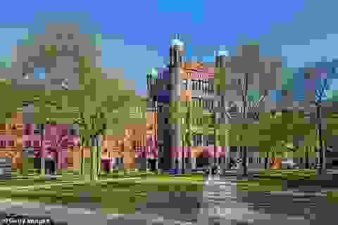 Bộ Tư pháp Mỹ kiện Đại học Yale vì kỳ thị thí sinh gốc Á