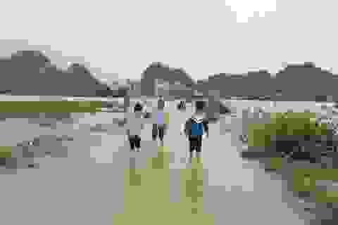 Ninh Bình: Nước lũ dâng nhanh, gần 300 học sinh phải nghỉ học