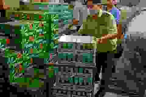 Tiêu huỷ hàng trăm thùng bia Heineken nhập lậu, không đạt chuẩn chất lượng