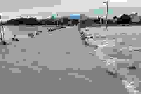 Mưa lớn kéo dài nguy cơ gây lũ ở Ninh Thuận