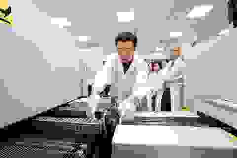 Đưa vào vận hành nhà máy công nghệ cao SMT đầu tiên ở miền Trung