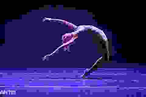 Sau những ngày tranh tài hấp dẫn, các tài năng múa đã lộ diện