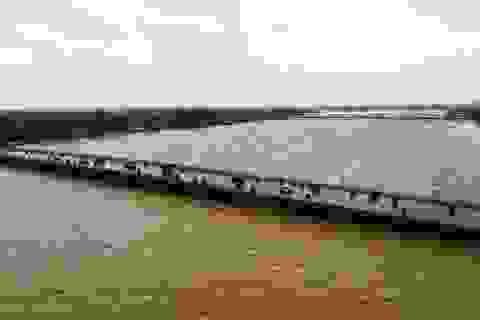 Hình ảnh nước lũ trên sông Hương cuồn cuộn, đục ngàu