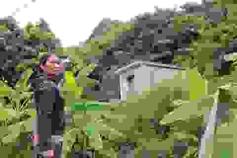 Ninh Bình: Di dời khẩn cấp hàng chục hộ dân khỏi vùng nguy cơ sạt lở núi