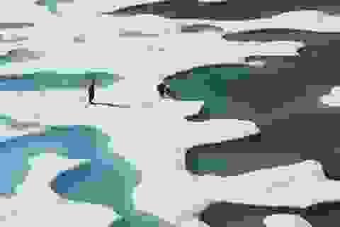 Lớp băng vĩnh cửu tan chảy có thể gây ra sóng thần mạnh ở Alaska