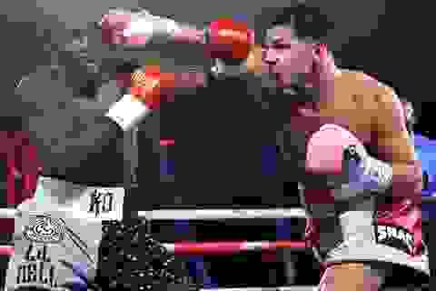 Võ sĩ có 15 lần chiến thắng bằng knock-out khiến Mike Tyson nể phục