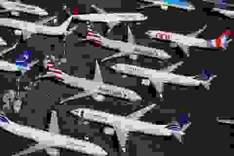 Loạt phi công thế giới chuyển sang bán hàng online, làm thợ mộc vì Covid-19