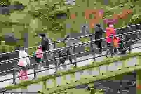 """Cách nhau cây cầu, bên này """"giãn cách xã hội"""", nửa kia thoải mái giao lưu"""