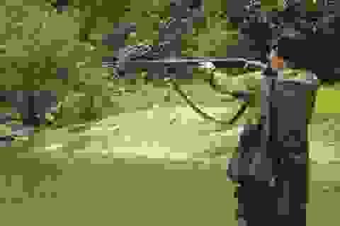 Dùng súng tự chế bắn chim, vô tình bắn chết người