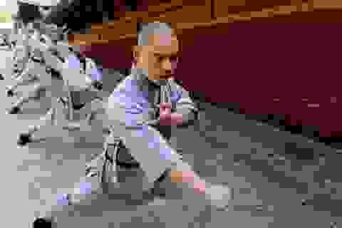 Vì sao võ thuật truyền thống Trung Quốc trượt dốc thê thảm?