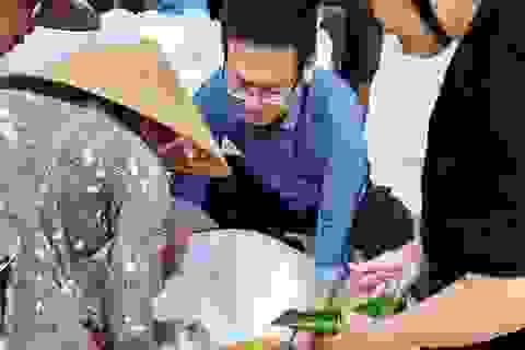 Phân bổ 1.000 tấn gạo và 4 tấn lương khô cho người dân vùng lũ