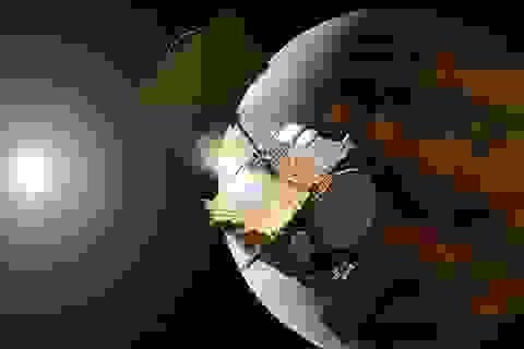 Các nhà khoa học nghi ngờ tìm thấy dấu hiệu của sự sống trên sao Kim