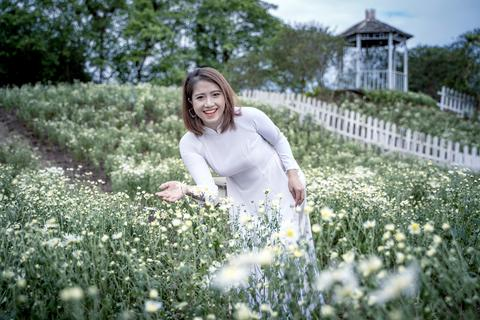 Lạc vào cánh đồng cúc họa mi 3.000m2 đẹp mê mẩn ở Hà Nội