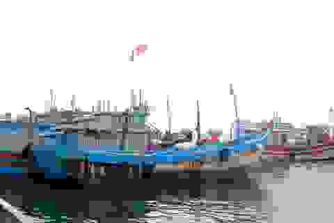 Quảng Nam yêu cầu di dời dân, tài sản ở vùng nguy hiểm để tránh bão