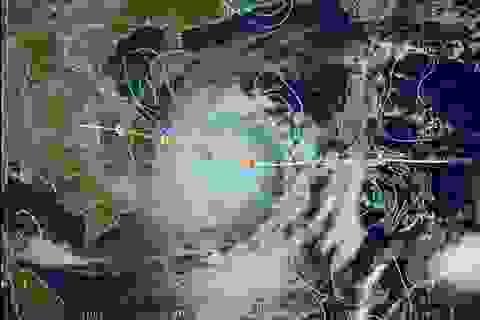 """""""Nếu giữ cấp 12 khi vào đất liền, bão số 9 sẽ có sức tàn phá khủng khiếp"""""""