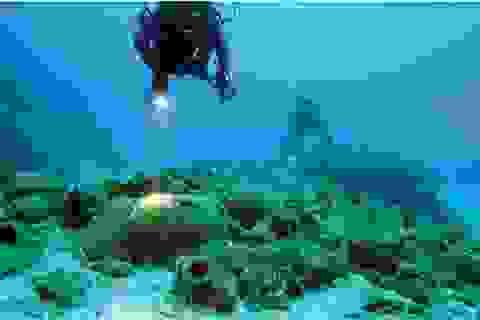 """""""Kho báu"""" gần 4.000 năm tuổi được tìm thấy dưới đáy biển"""