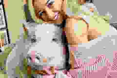 Chung sống cùng lợn 80 kg, yêu thương như con người