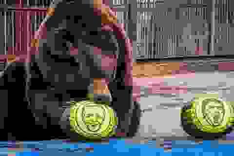 Bầu cử Mỹ 2020: Hổ, gấu dự đoán ông Biden đắc cử tổng thống