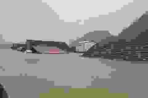 Bộ Xây dựng đề xuất hỗ trợ hơn 37.500 ngôi nhà hư hỏng vì bão lũ