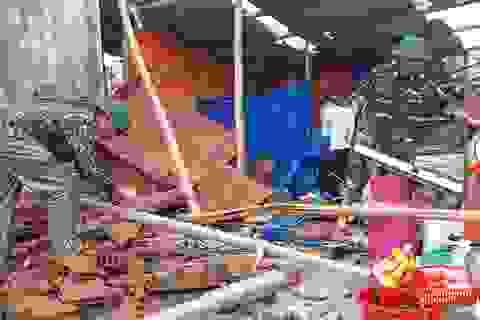 """Bình Định: Bão số 9 """"quét bay"""" gần 394 tỷ đồng"""