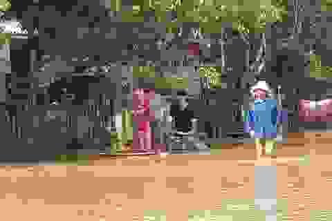 Phân bổ 2.000 tấn gạo cứu đói cho nhân dân vùng bị thiên tai, mưa lũ