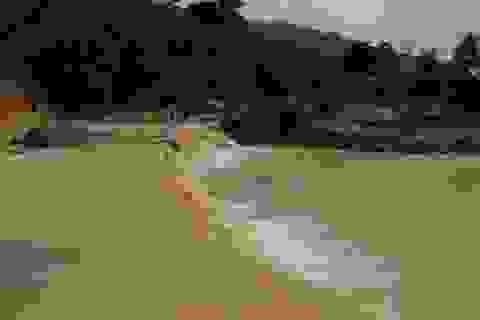Quảng Nam: Dân băng rừng vác lương thực tiếp tế vào nơi bị sạt lở chia cắt