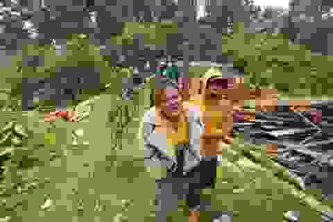 Sạt lở ở Trà Leng: Đoàn chuyên gia địa chất hỗ trợ tìm kiếm nạn nhân