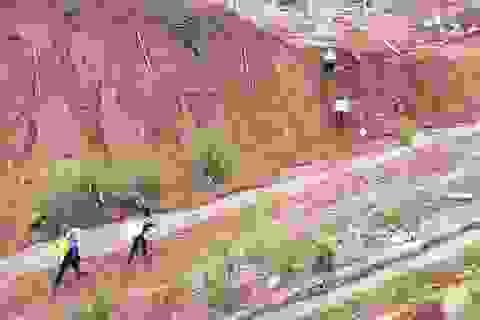 Vụ sạt lở ở Phước Sơn: Băng rừng cõng hàng tiếp tế