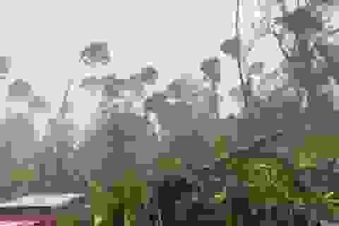 Philippines sơ tán khẩn cấp gần 1 triệu người trước siêu bão Goni