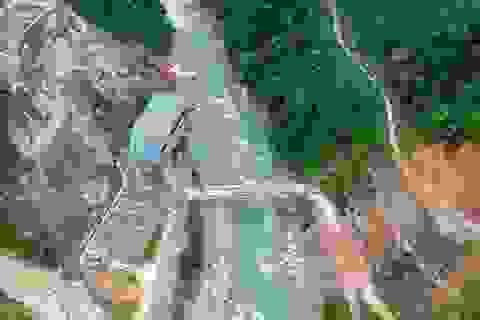 Đề xuất thực hiện phân loại dự án theo tiêu chí về môi trường