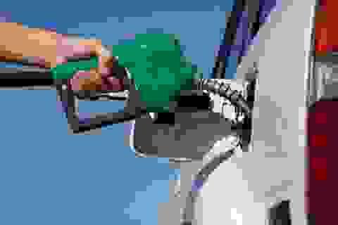 Cùng chế tạo nắp bình xăng ô tô: Giá tại Việt Nam đắt gấp 2,5 lần Thái Lan