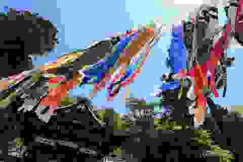 Văn hóa cá chép trong lễ hội Nhật Bản