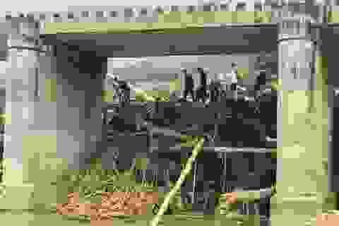 """Lũ cuốn lượng gỗ """"khổng lồ"""" bít kín cầu Sông Bua"""