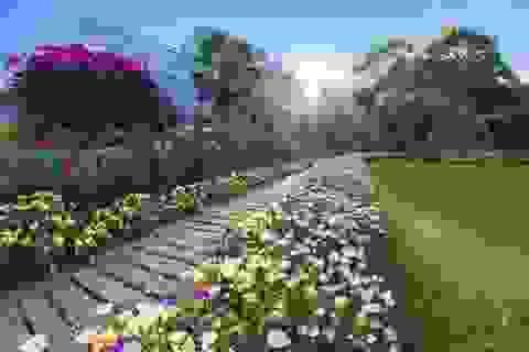 Cụ ông 70 tuổi biến đất toàn cỏ dại thành vườn 5000m2 đẹp như tiên cảnh