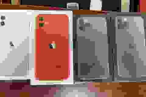 Bắt lô iPhone 11,12 không giấy tờ trong chiến dịch truy quét điện thoại lậu