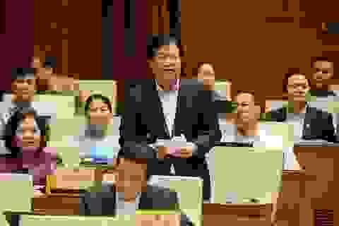 Phó Thủ tướng chỉ ra nguyên nhân gây sạt lở đất rừng