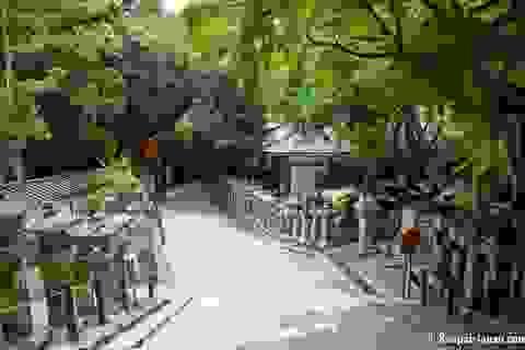 Đền Kasuga Taisha với nghìn chiếc đèn lồng mang ước vọng trăm năm