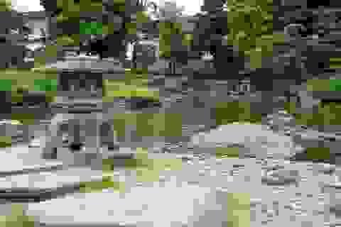 Wabi-sabi: Triết lý về cái đẹp trong sự không hoàn hảo của người Nhật Bản