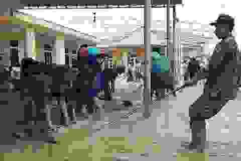 Cán bộ, chiến sĩ Biên phòng hỗ trợ người dân khắc phục hậu quả sau lũ