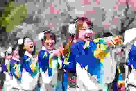 Vũ điệu mùa hè sôi động diễn ra giữa ngày xuân